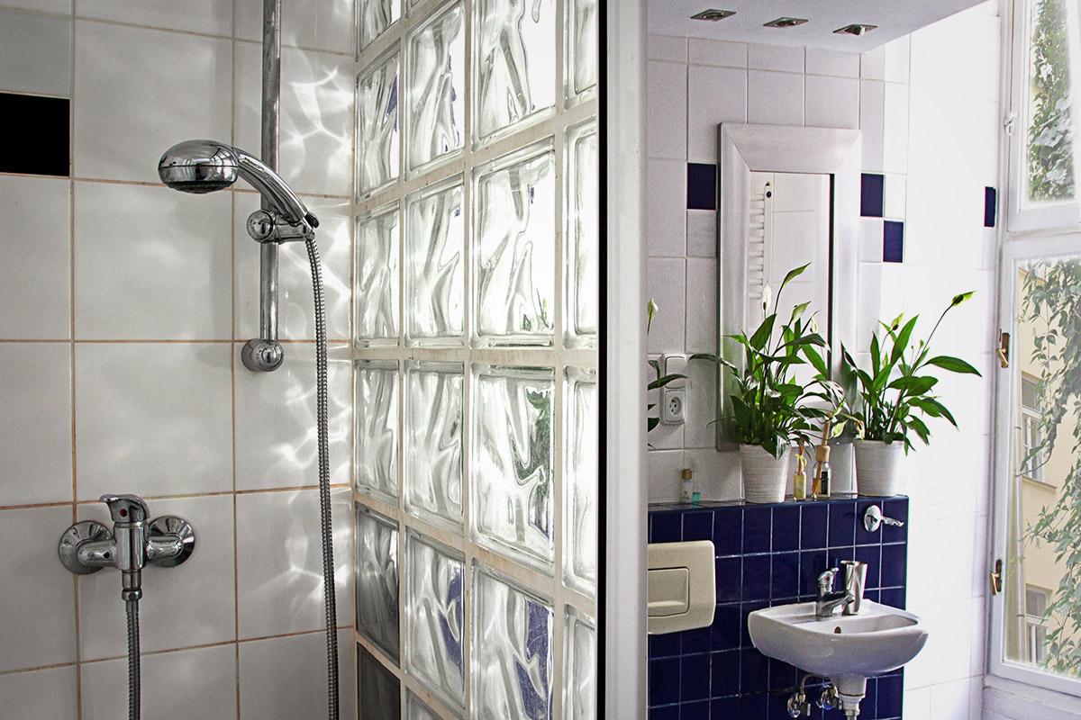 Zatecka 8 shower